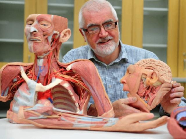 Студенты-медики будут практиковаться на 3D-печатных анатомических моделях