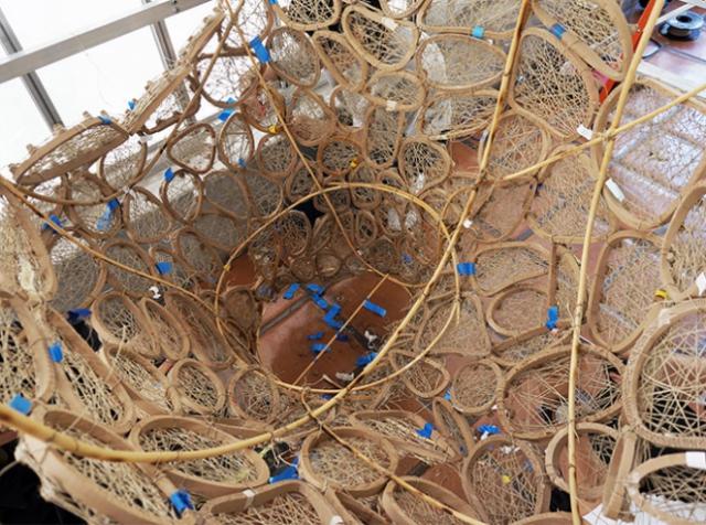 В Ботаническом саду Калифорнийского университета можно увидеть огромное птичье гнездо из 3D-печатной древесины и натуральных волокон