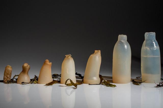 В Исландии изобрели бутылку из водорослей