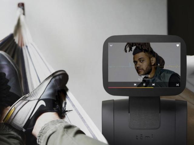 В Roboteam создали минимально человекоподобного робота-помощника Temi