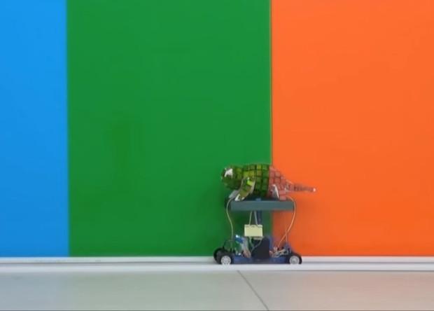 В Китае презентовали робота-хамелеона