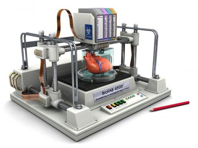 В Квинсленде появится центр 3D-печати человеческих органов
