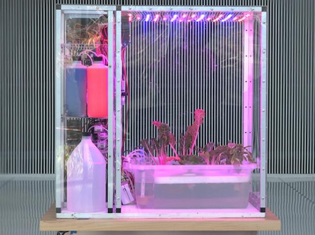 В MIT создали «пищевой компьютер» на базе искусственного интеллекта