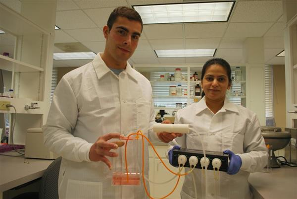 Выпускники американского университета разработали эффективный метод лечения рака