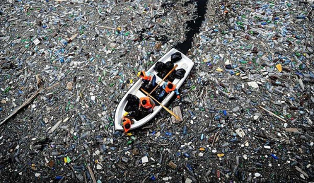 Японцы открыли разлагающие пластик бактерии