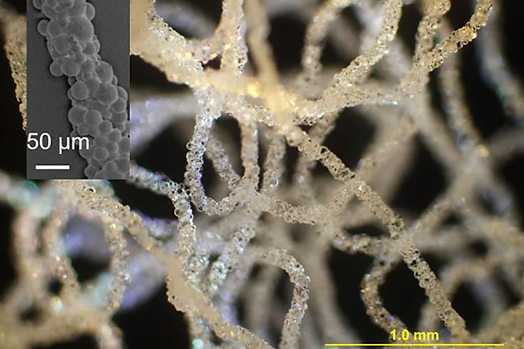 Учёные изобрели уникальный способ 3D-печати в воде