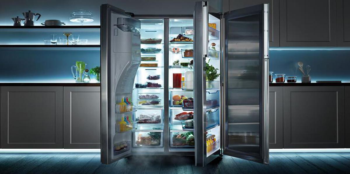 Умный холодильник для рыбы и мяса