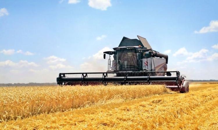 В Cognitive Technologies создали систему, защищающую от кражи зерна