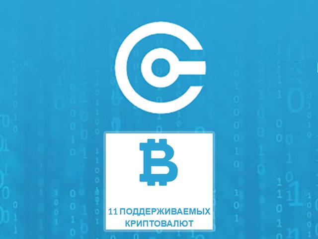 В России запустили сервис, позволяющий онлайн-магазинам принимать криптовалюты