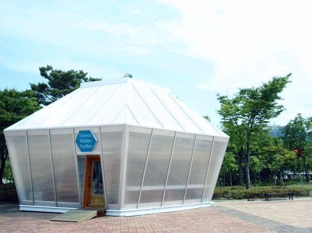 Южная Корея инвестирует 8,5 млн долларов в «зелёный» криптовалютный проект