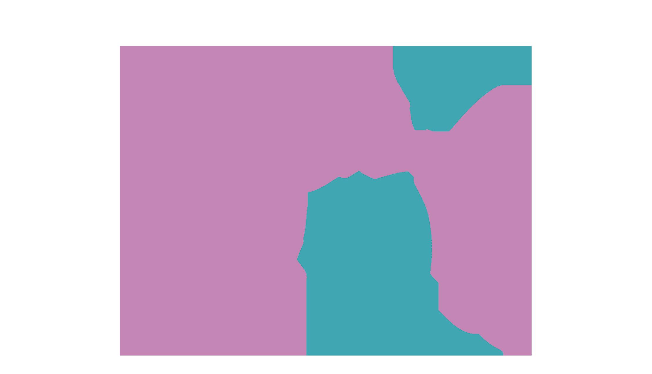 MagicMeow