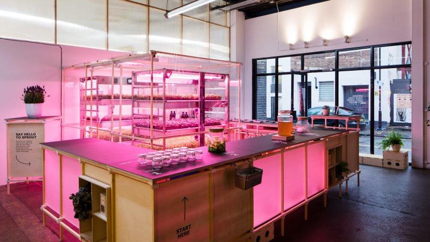Smart Food & GeekGarden: IKEA develops home vertical farms - 1
