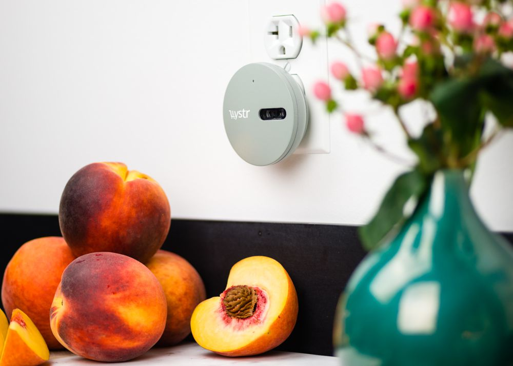 Smart Food & Geek Garden: Smart device makes shopping list and sends it to all your family members - 1