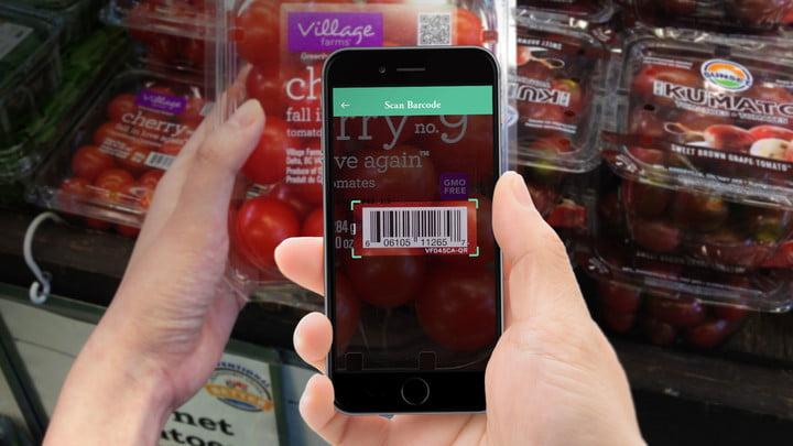 Smart Food & GeekGarden: V SShA nachali rabotat nad sozdaniem Interneta edyi - 1