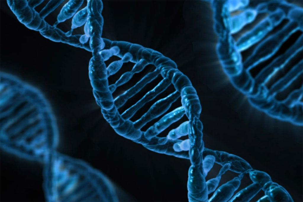 Редактирование ДНК height=31