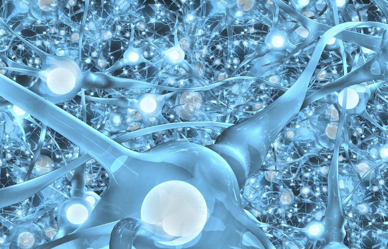 Биотехнологии: футуризм и реальность - 2