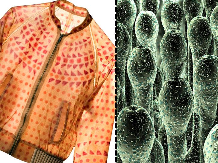 Биотехнологии: футуризм и реальность - 3