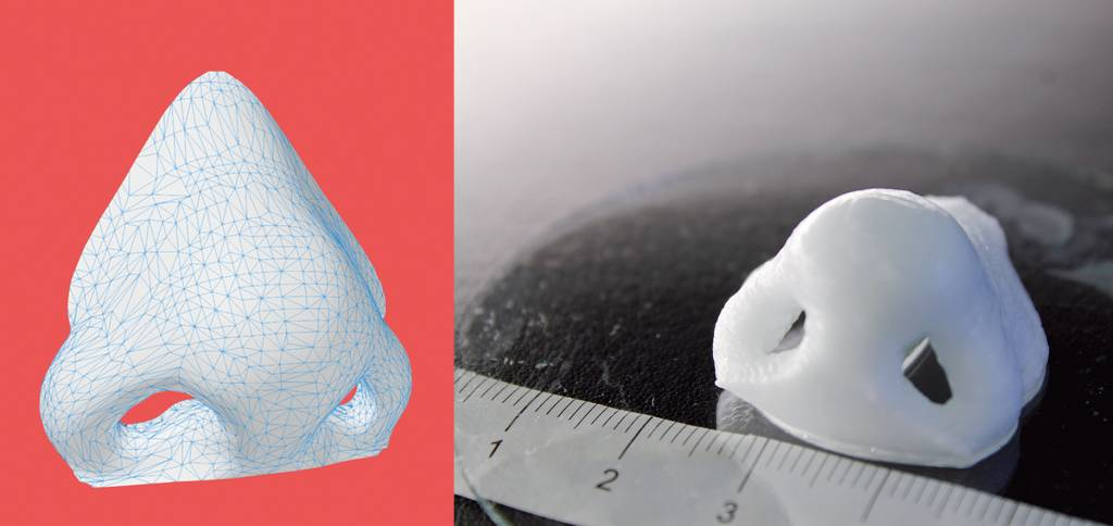 3d print conference kiev: 3D printing will help you achieve the perfect nose shape